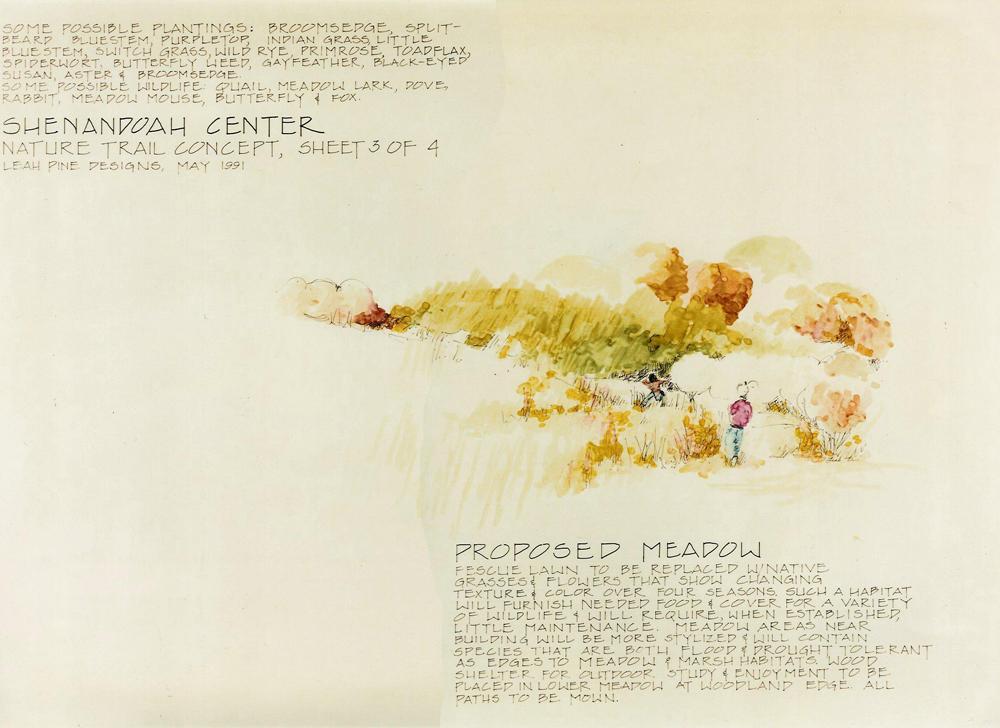 Meadow Concept