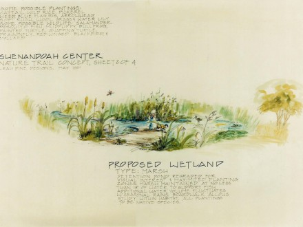 Wetland/Detention Basin Concept