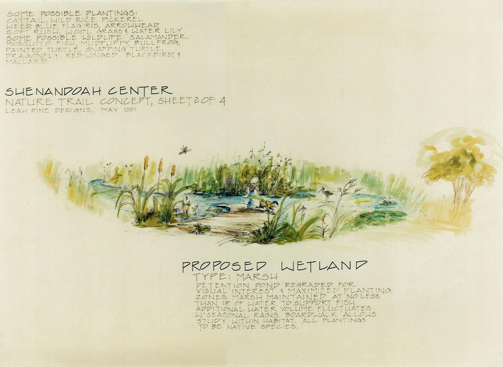 Wetland/Detention Basin Concept